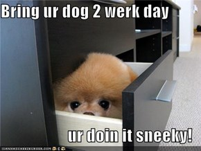 Bring ur dog 2 werk day  ur doin it sneeky!