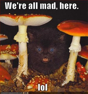 We're all mad, here.  lol