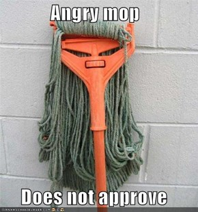 Angry mop   Does not approve
