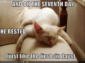 AND ON THE SEVENTH DAY HE RESTED (just like the first six days)