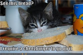 See this bread?  I require a cheezburger to go on it