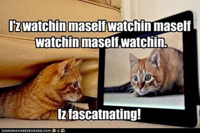 I'z watchin maself watchin maself  watchin maself watchin.