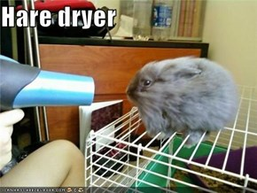 Hare dryer