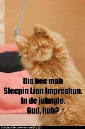 Dis bee mah  Sleepin Lion Impreshun. In de juhngle. Gud, huh?