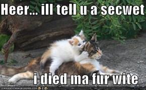 Heer... ill tell u a secwet  i died ma fur wite