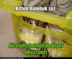 Kitteh Rulebuk sez: