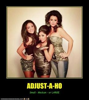 ADJUST-A-HO