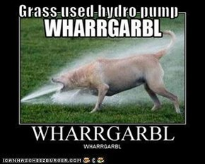 Grass used hydro pump