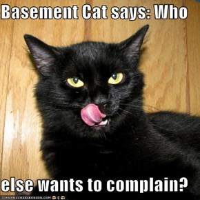 Basement Cat says: Who  else wants to complain?