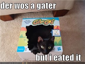 der wos a gater  but i eated it