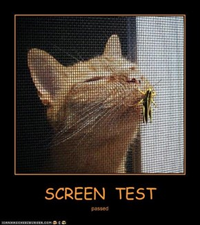 SCREEN  TEST