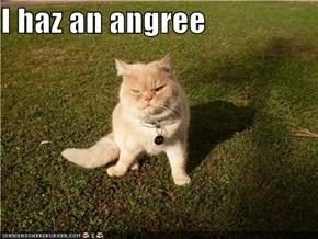 I haz an angree
