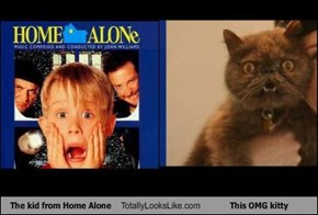 The kid from Home Alone Totally Looks Like This OMG kitty