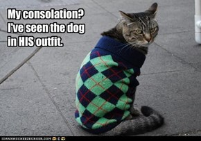 My consolation? I've seen the dog in HIS outfit.