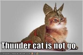 Thunder cat is not go.