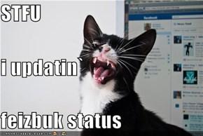 STFU i updatin` feizbuk status