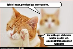 Sylvia, I never...promised you a rose garden...