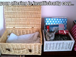 your offering is insufficiently cozy...