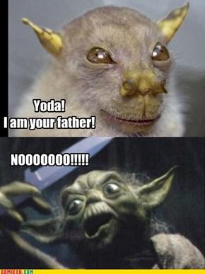 Yoda's Father?