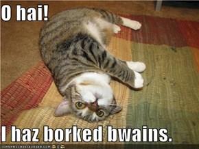 O hai!  I haz borked bwains.