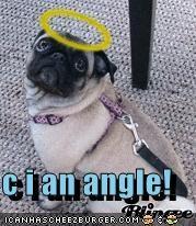 c i an angle!