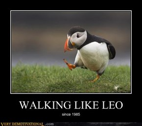 WALKING LIKE LEO