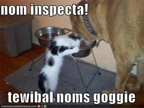 nom inspecta!  tewibal noms goggie