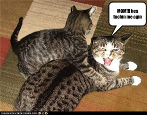 MOM!!! hes tuchin me agin