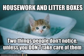 HOUSEWORK AND LITTER BOXES