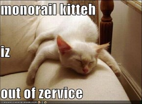 monorail kitteh iz out of zervice