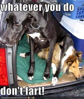 whatever you do  don't fart!