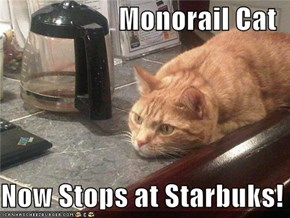 Monorail Cat  Now Stops at Starbuks!