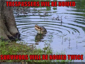 TRESPASSERS WIL BE NOMED  SURVIVORS WILL BE NOMED TWICE