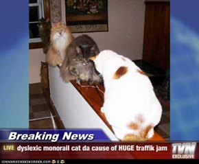 Breaking News - dyslexic monorail cat da cause of HUGE traffik jam