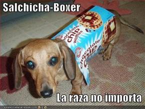 Salchicha-Boxer                            La raza no importa
