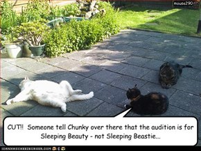 CUT!!  Someone tell Chunky over there that the audition is for Sleeping Beauty - not Sleeping Beastie...