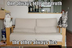 One always tells the truth  the other always lies