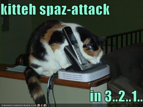 kitteh spaz-attack                                     in 3..2..1..