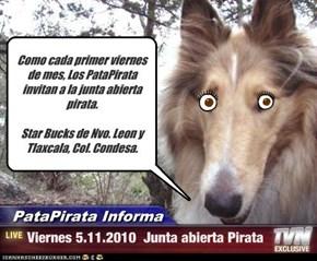Como cada primer viernes de mes, Los PataPirata invitan a la junta abierta pirata.   Star Bucks de Nvo. Leon y Tlaxcala, Col. Condesa.