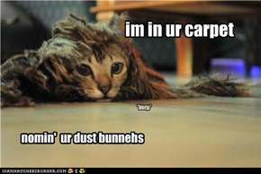 im in ur carpet