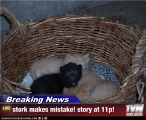 Breaking News - stork makes mistake! story at 11p!
