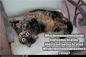 WhatdoyoumeanyouthinkI hadtoomuchcatnip, Ididnthavetoomuchcatnip. WhydoyouthinkIhadtoomuch catnip?