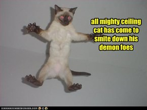 all mighty ceiling cat has come to smite down his demon foes