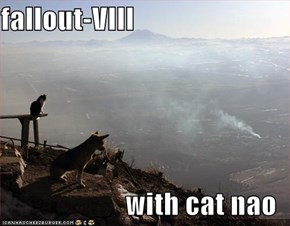 fallout-VIII  with cat nao