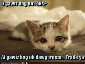 U gawtz bag ub roks?   Ai gawtz bag ub dawg treets... Trade ya