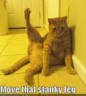 Move that stanky leg