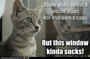 Stone walls do not a prison make, Nor iron bars a cage;