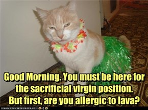 Good Morning. You must be here for the sacrificial virgin position.  But first, are you allergic to lava?