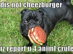 dis not cheezburger  iz report u 4 animl crulety
