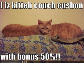I iz kitteh couch cushon  with bonus 50%!!